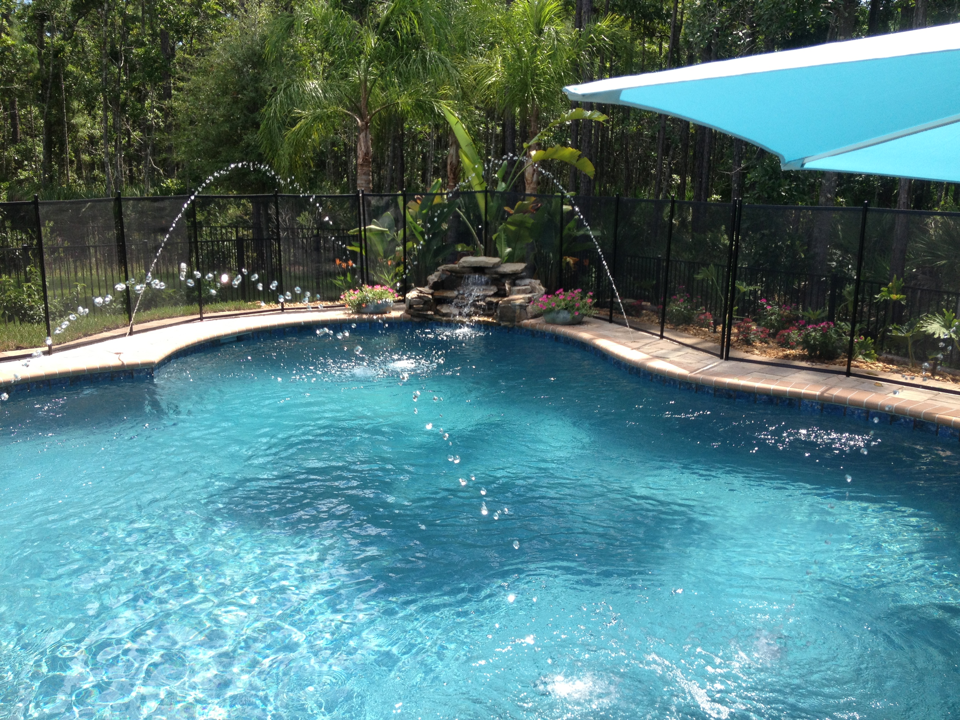swimming pool and spa photo gallery jacksonville middleburg
